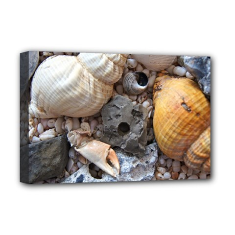 Beach Treasures Deluxe Canvas 18  x 12  (Framed)