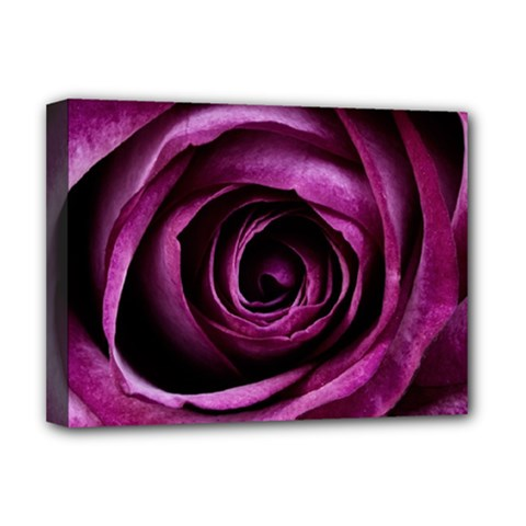 Deep Purple Rose Deluxe Canvas 16  X 12  (framed)