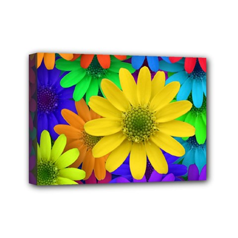 Gerbera Daisies Mini Canvas 7  X 5  (framed)
