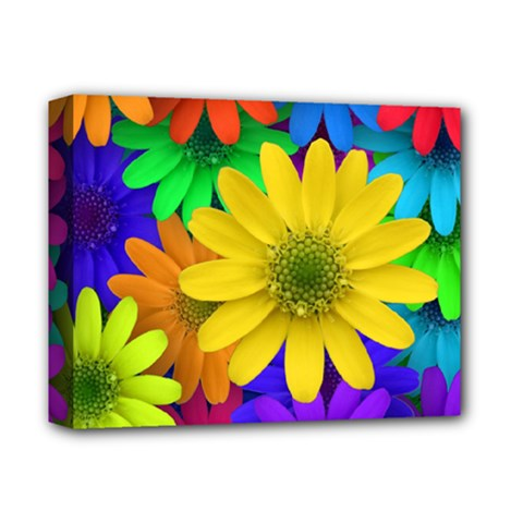 Gerbera Daisies Deluxe Canvas 14  X 11  (framed)