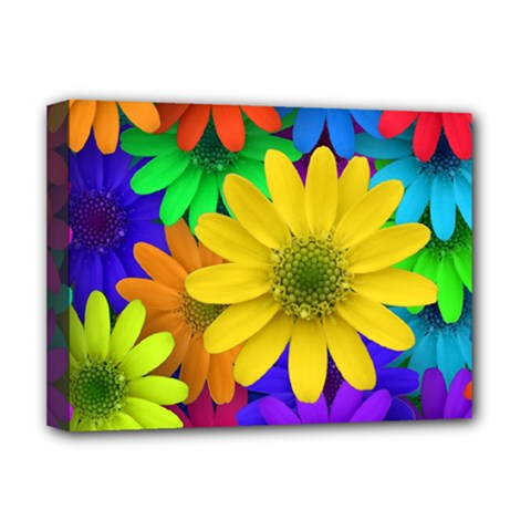 Gerbera Daisies Deluxe Canvas 16  X 12  (framed)
