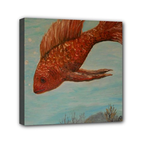 Gold Fish Mini Canvas 6  x 6  (Framed)
