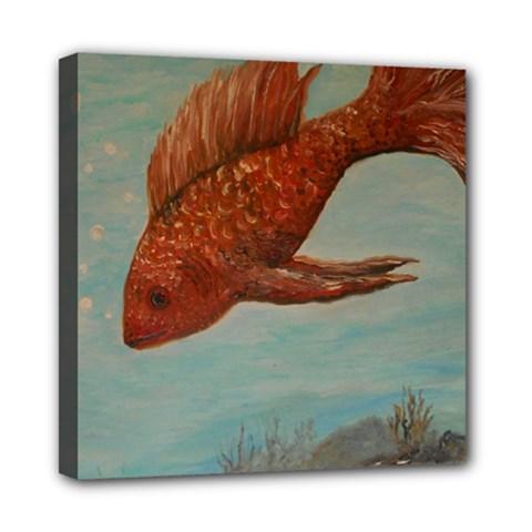 Gold Fish Mini Canvas 8  x 8  (Framed)