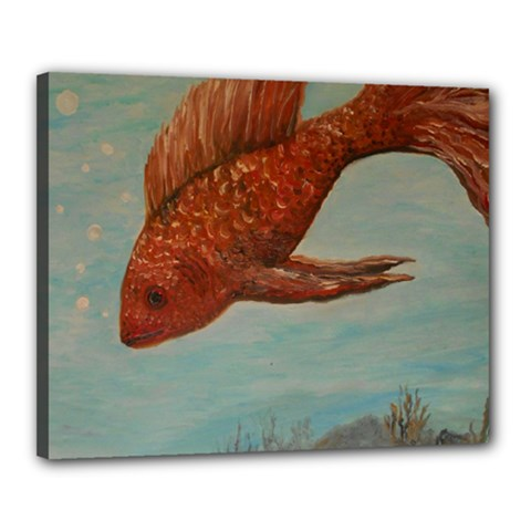 Gold Fish Canvas 20  X 16  (framed)