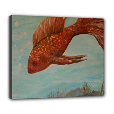 Gold Fish Deluxe Canvas 24  X 20  (framed)