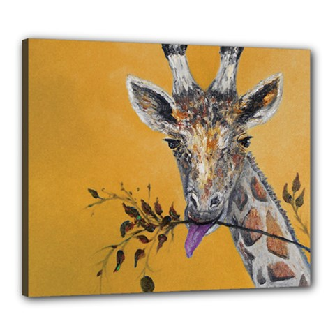 Giraffe Treat Canvas 24  X 20  (framed)