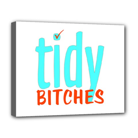 Tidy Bitcheslarge1 Fw Deluxe Canvas 20  x 16  (Framed)