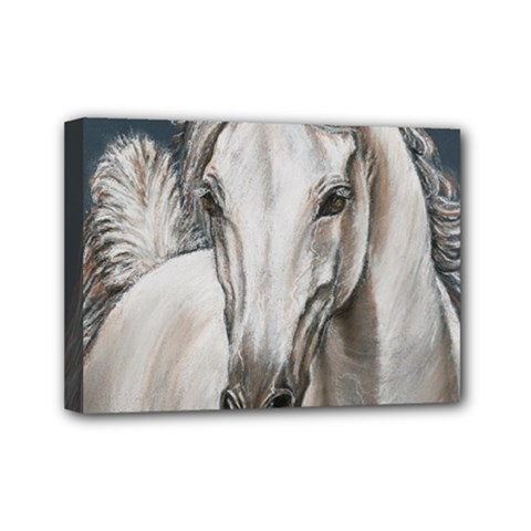 Breeze Mini Canvas 7  X 5  (framed)