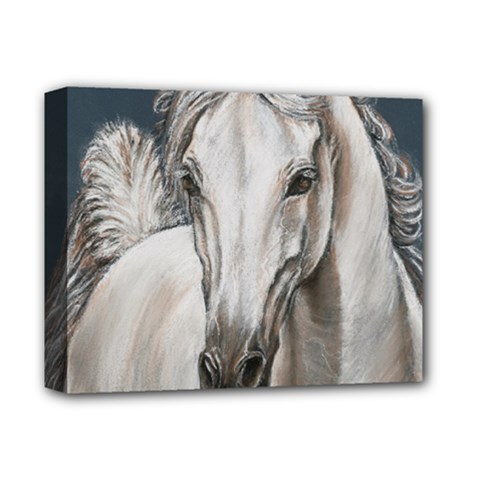 Breeze Deluxe Canvas 14  X 11  (framed)