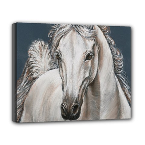 Breeze Deluxe Canvas 20  x 16  (Framed)