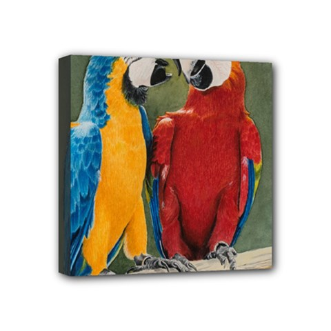 Feathered Friends Mini Canvas 4  x 4  (Framed)