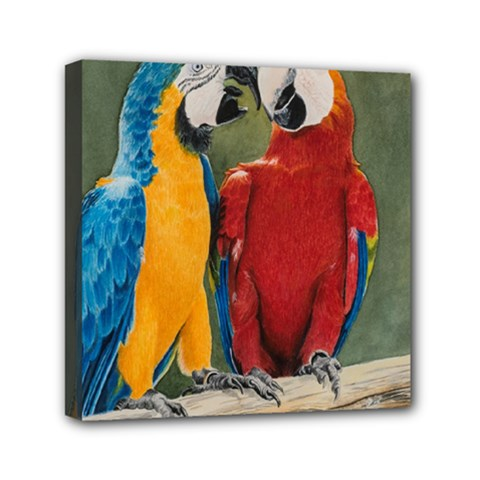 Feathered Friends Mini Canvas 6  x 6  (Framed)