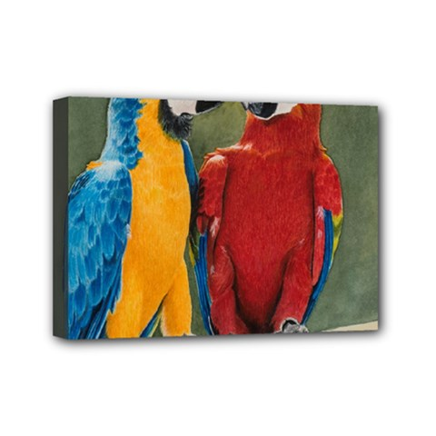 Feathered Friends Mini Canvas 7  x 5  (Framed)