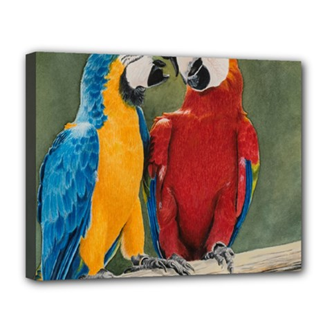 Feathered Friends Canvas 14  x 11  (Framed)