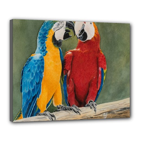 Feathered Friends Canvas 20  x 16  (Framed)