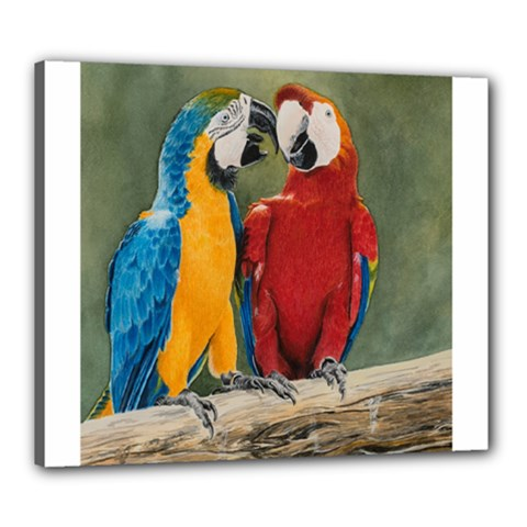 Feathered Friends Canvas 24  x 20  (Framed)