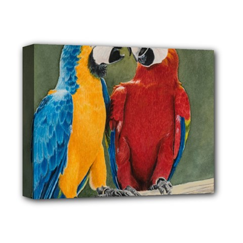 Feathered Friends Deluxe Canvas 14  x 11  (Framed)