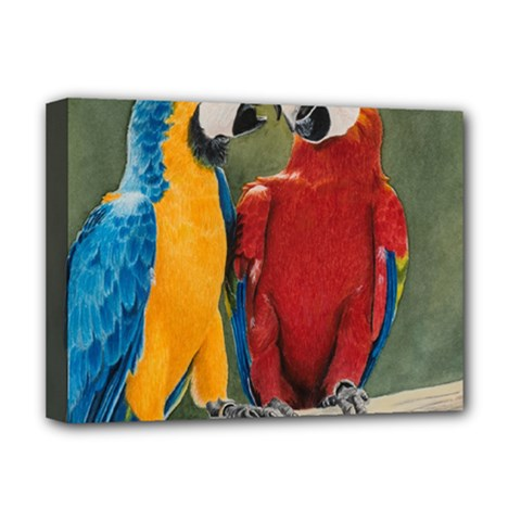 Feathered Friends Deluxe Canvas 16  x 12  (Framed)