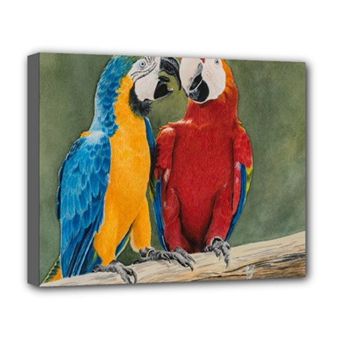 Feathered Friends Deluxe Canvas 20  x 16  (Framed)