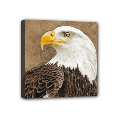 Eagle Mini Canvas 4  x 4  (Framed)