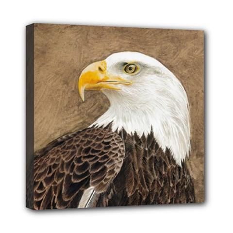 Eagle Mini Canvas 8  x 8  (Framed)