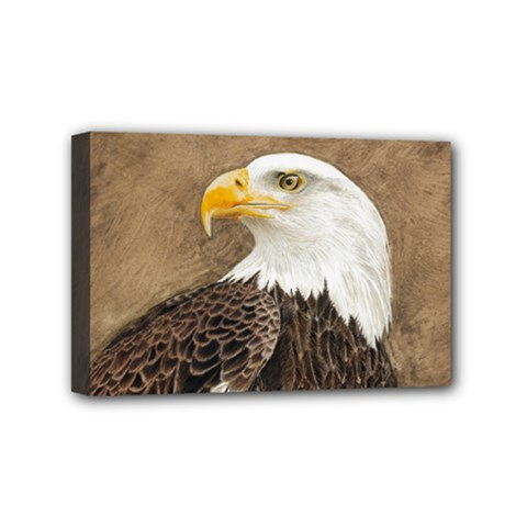 Eagle Mini Canvas 6  x 4  (Framed)