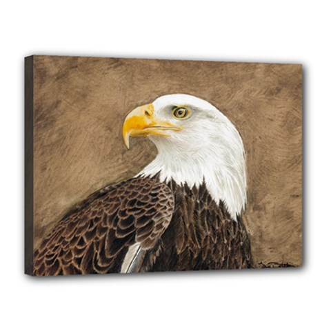 Eagle Canvas 16  x 12  (Framed)