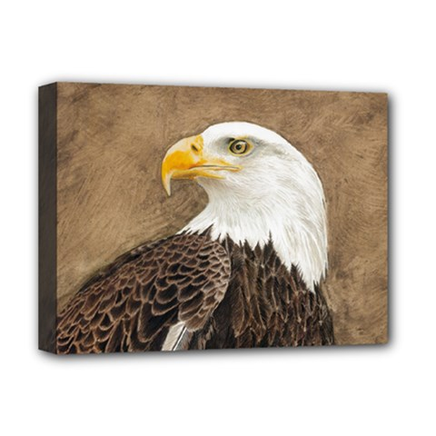 Eagle Deluxe Canvas 16  X 12  (framed)