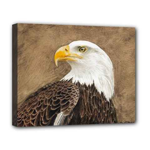 Eagle Deluxe Canvas 20  x 16  (Framed)