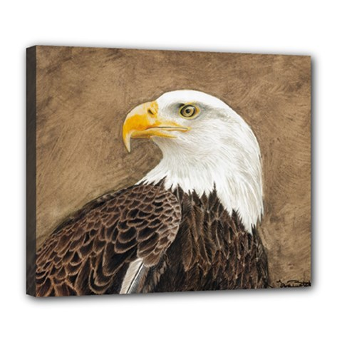 Eagle Deluxe Canvas 24  X 20  (framed)