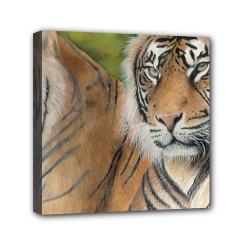 Soft Protection Mini Canvas 6  x 6  (Framed)