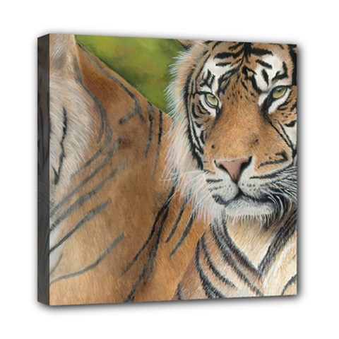 Soft Protection Mini Canvas 8  x 8  (Framed)