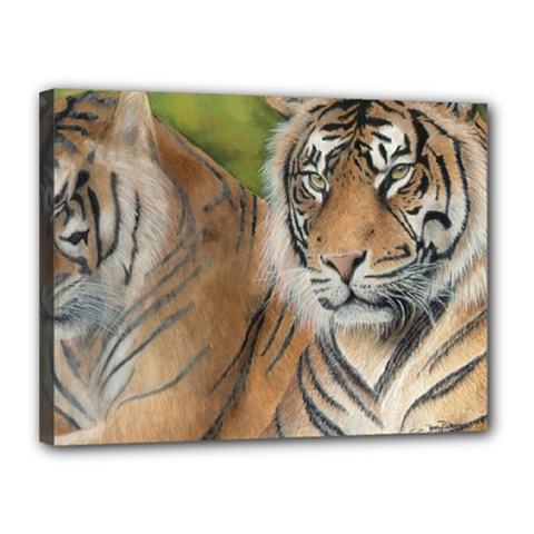 Soft Protection Canvas 16  X 12  (framed)