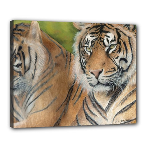 Soft Protection Canvas 20  X 16  (framed)