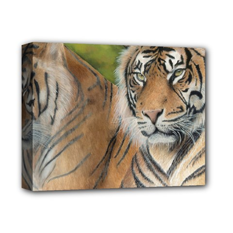 Soft Protection Deluxe Canvas 14  x 11  (Framed)