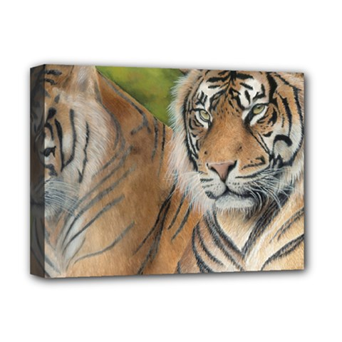 Soft Protection Deluxe Canvas 16  X 12  (framed)