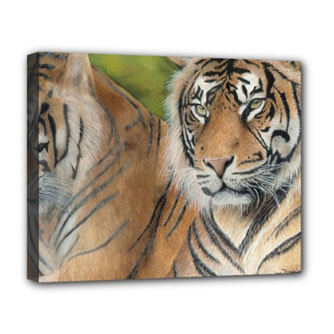 Soft Protection Deluxe Canvas 20  x 16  (Framed)