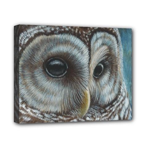 Barred Owl Canvas 10  x 8  (Framed)