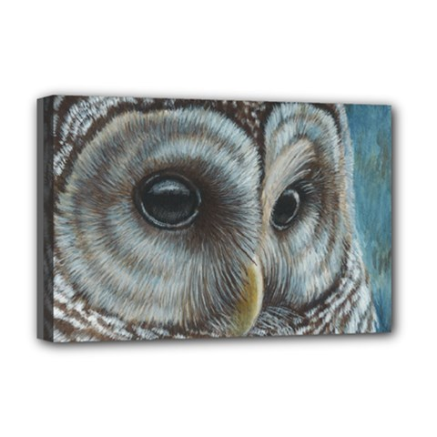 Barred Owl Deluxe Canvas 18  X 12  (framed)