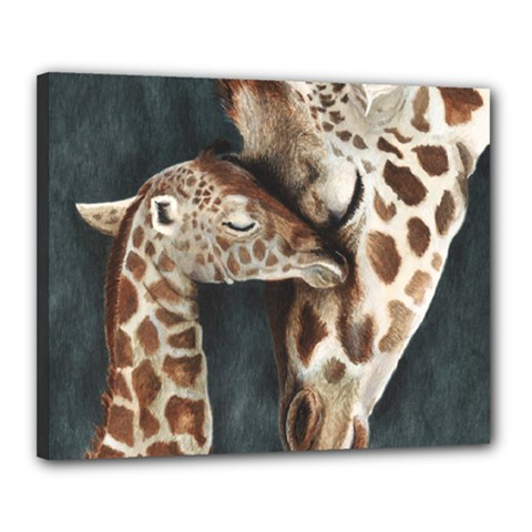 A Mother s Love Canvas 20  X 16  (framed)