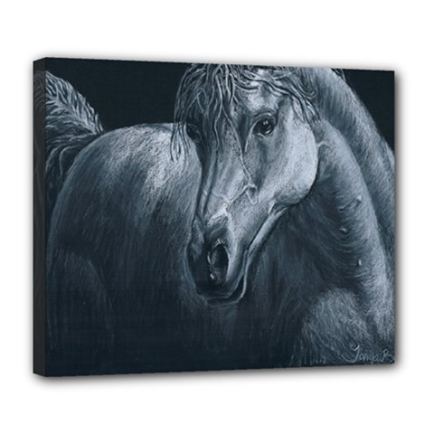 Equine Grace  Deluxe Canvas 24  x 20  (Framed)