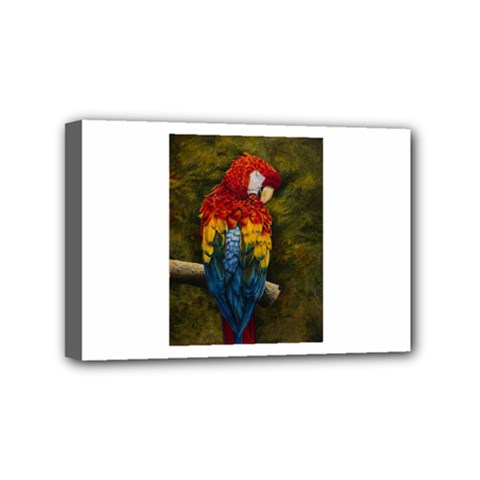 Preening Mini Canvas 6  x 4  (Framed)