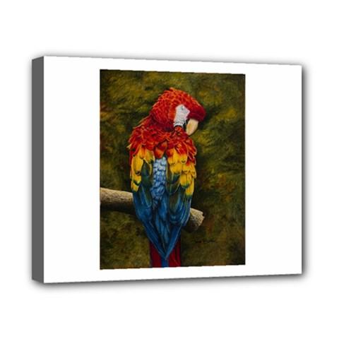 Preening Canvas 10  X 8  (framed)