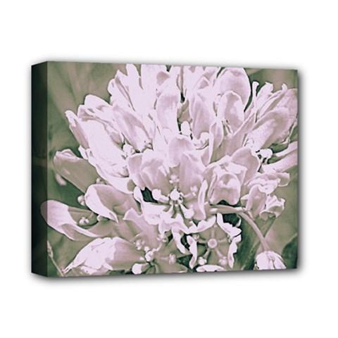 White Flower Deluxe Canvas 14  X 11  (framed)