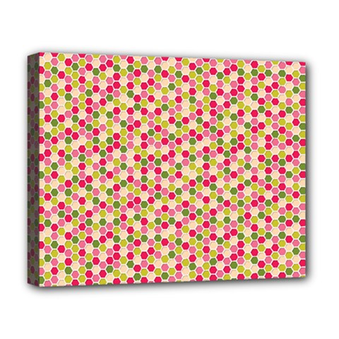 Pink Green Beehive Pattern Deluxe Canvas 20  x 16  (Framed)