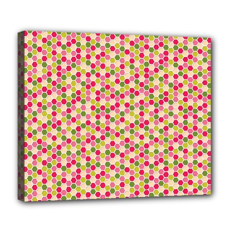 Pink Green Beehive Pattern Deluxe Canvas 24  X 20  (framed)
