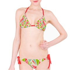 Tricolors Ii Bikini