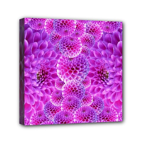 Purple Dahlias Mini Canvas 6  X 6  (framed)
