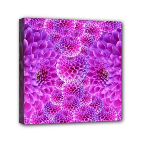 Purple Dahlias Mini Canvas 6  x 6  (Framed)