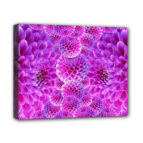 Purple Dahlias Canvas 10  x 8  (Framed)